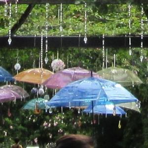 横浜イングリッシュガーデン散歩 紫陽花編①