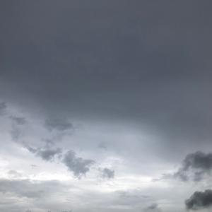 雨〜雨上がり
