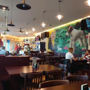 トシ・セストリ:パブロックバンドテーマレストランとA.ランゲロヴァーのコンサート  [UA-125732310-1]