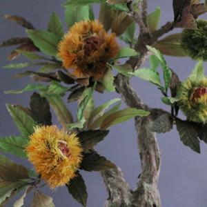 イガイガが本物みたいな新しい栗の盆栽(アート盆栽/bonsai)