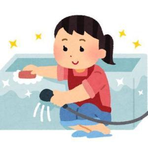 新居の浴室にカビが発生!?