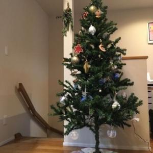 スーパーセール買ったもの!とようやく出せたクリスマスツリー