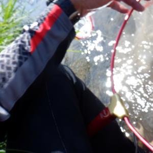 オトリはヘロヘロ~噛み合わない鮎釣り(T_T)