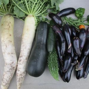 好きな野菜です