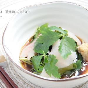 【レシピ】イワナの三杯酢(渓流食堂さま)