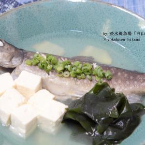 【レシピ】イワナのマース煮(淡水養魚場「白山堂」様)