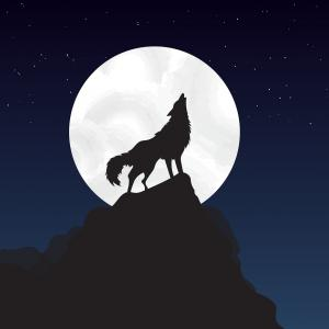 ●第4回オンライン人狼会開催します!