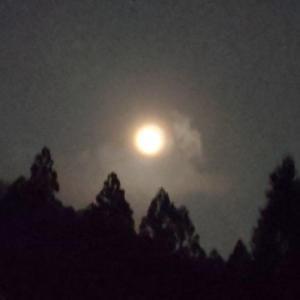 お地蔵さまと満月…☆