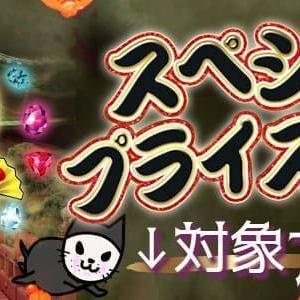 【30%OFF!】朝10時まで限定のスペシャルプライスOFF!