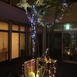ライトとお誕生日会