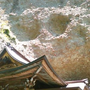 岩屋寺の参道もゆっくりゆっくり歩く