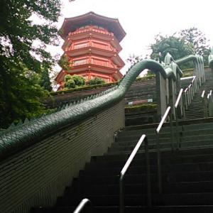 武蔵野観音霊場・金乗院の境内と、その周辺