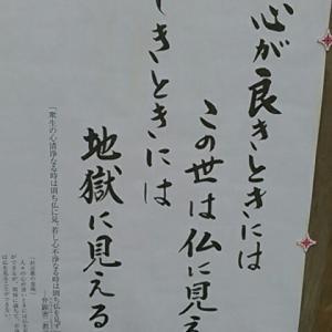 「逆打ち武蔵野観音霊場巡礼」第五番札所・多聞寺(たもんじ)