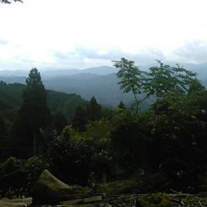 高山不動尊の本堂