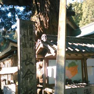 この時が七回目の極楽寺(四国霊場第二番札所)参詣