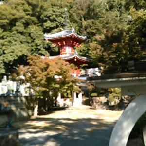 平成最後の、四国霊場第三番札所・金泉寺参詣