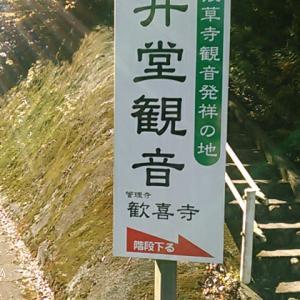 「武蔵野観音霊場」ちょっと寄り道、「岩井堂観音」