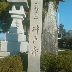 藤井寺の本尊も、井戸寺の本尊も、薬師如来