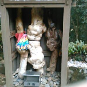四国霊場第二十六番札所・金剛頂寺の境内を歩き、西へ
