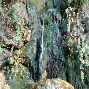 四国霊場・清滝寺の清い滝