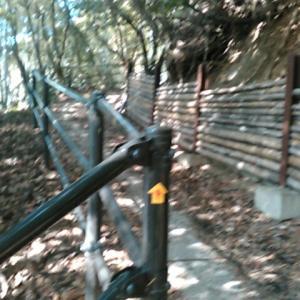 禅師峰寺の山道を登って