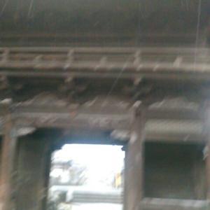 雨が降っていたのでタクシーを利用し、西林寺へ
