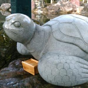 金剛福寺境内でウミガメ(像)がお迎え