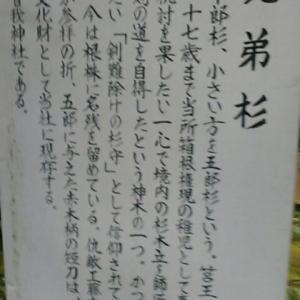 箱根神社と曾我兄弟