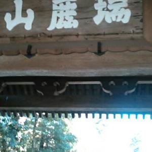 鎌倉五山・臨済宗円覚寺派大本山