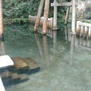 鹿島神宮境内の「御手洗の池」