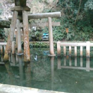 神秘の池・鹿島神宮の御手洗