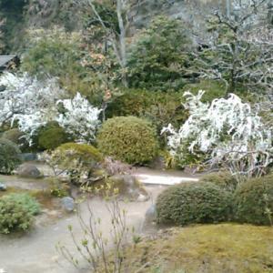 東国花の寺百ケ寺の一つ、海蔵寺