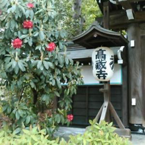 東京都町田市の高蔵寺へ