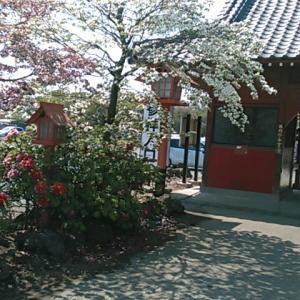 群馬県太田市新田大根町の大慶寺(たいけいじ)へ