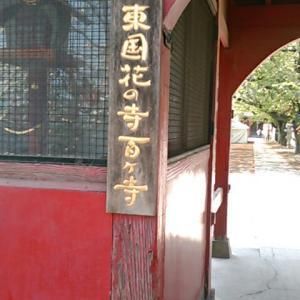 東国花の寺百ケ寺のひとつ、大慶寺(群馬県太田市)