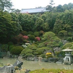武蔵野観音霊場・聖天院の庭園