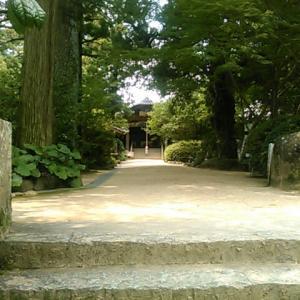 八坂寺から歩いて浄瑠璃寺(四国霊場第四十六番札所)へ