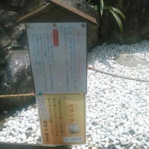 武蔵野観音霊場・観音寺の境内