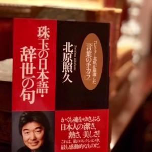 7bookcovers 第7回:珠玉の日本語・辞世の句