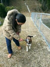 保護犬ボランティアさんのための悩み相談会