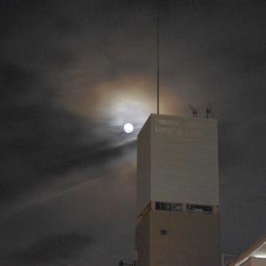 十五夜・中秋の名月