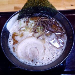 黒潮豚骨(770円)麺ふつう、バラチャーシュー選択@つけ麺 中華そば 節極(多摩市)