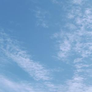 秋空〜朝の様子〜