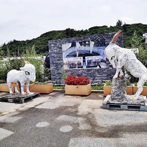本部の山羊(ヒージャー)スポット!『田空の駅 ハーソー公園』たくさんの山羊(ヒージャー)と触れ合える最高の癒しスポット