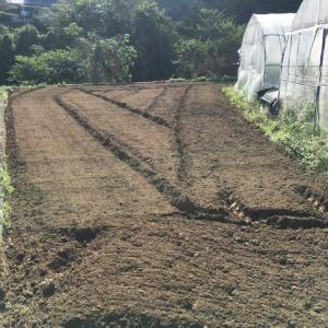 雨の前の農作業でヘトヘト