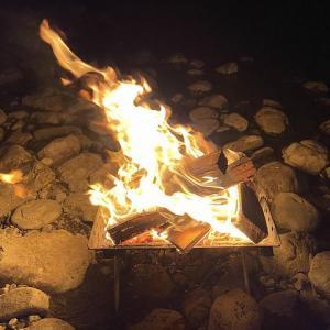 2020年11月の3連休はドミノピザ&焚き火