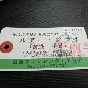 加賀フィッシングエリア_20210111『自作ルアーでの一匹が嬉しい』