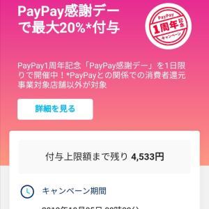 PayPay 感謝デー でお買い物♡&バラのお手入れ