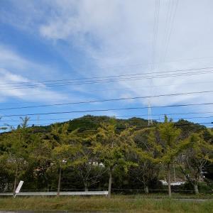 眺望抜群の黍生(きびゅう)山と香嵐渓