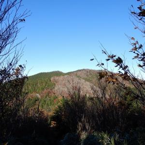 瓢ヶ岳(ふくべがたけ)の紅葉
